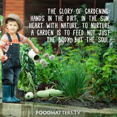 glory-of-gardening